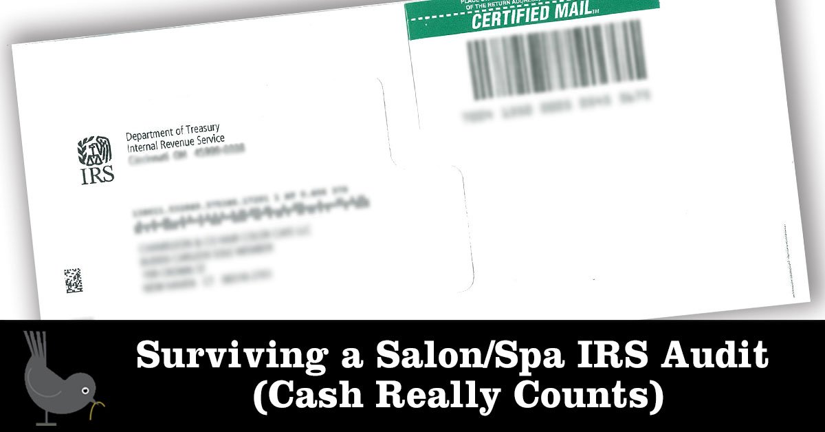 Salon or Spa IRS Audit